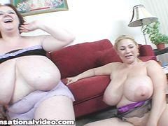 Две симпатичные толстые женщины ебутся с выносливым мужиком